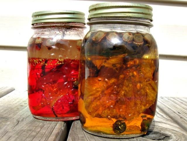 Fall Discovery Jars