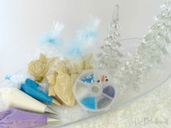 Frozen-Themed Cookie Decorating Kit