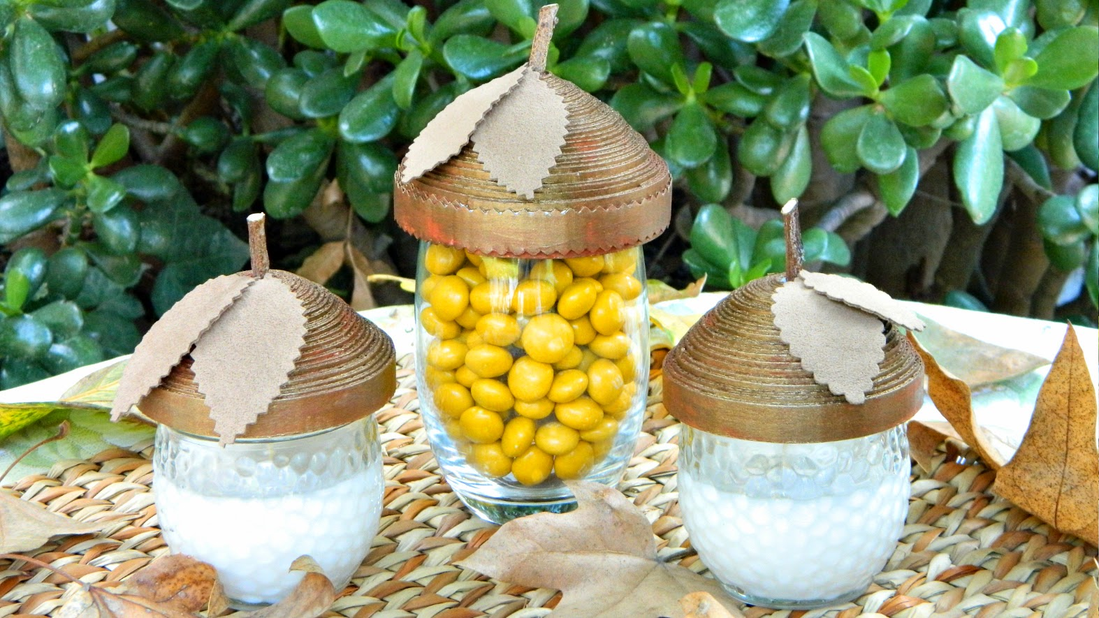 Acorn Dish Toppers
