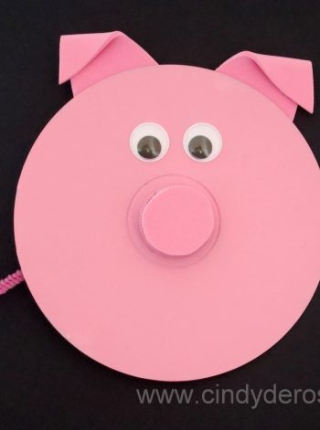 CD Pig