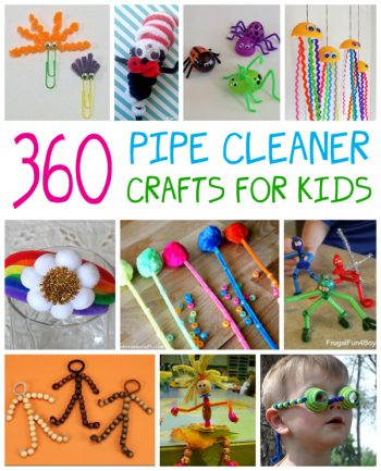 360 Pipe Cleaner Crafts for Kids