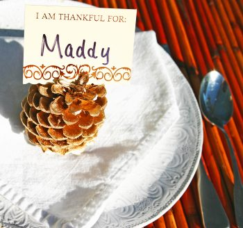 Pine Cone Place Card Holders