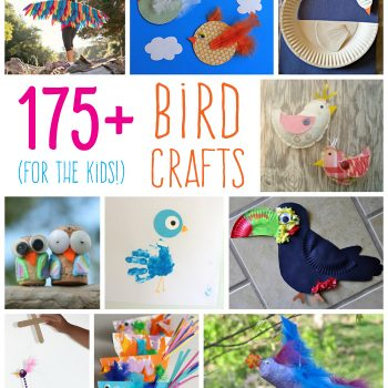 175+ Bird Crafts for Kids
