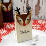 Reindeer Gift Bags