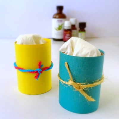 Toilet Paper Roll Air Fresheners