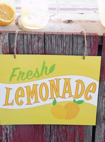 Printable Lemonade Stand Signs