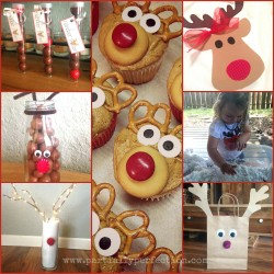 Reindeer Theme Party