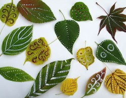 Decorated Leaves