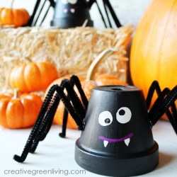 Friendly Flower Pot Spiders