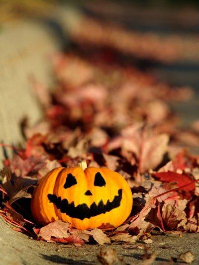 Halloween Gourd Friends
