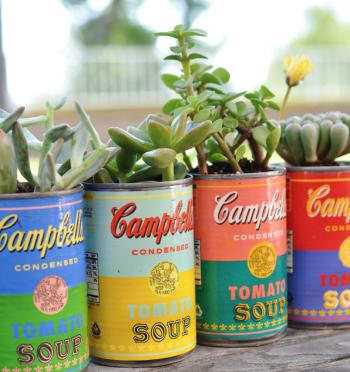 Soup Can Succulent Planters