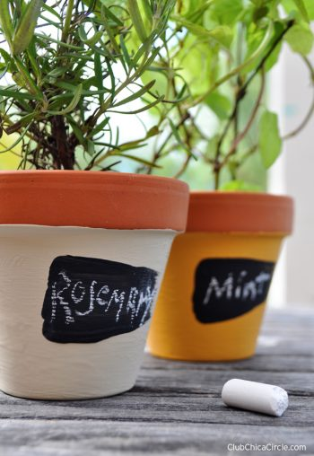 Mini Herb Garden Pots