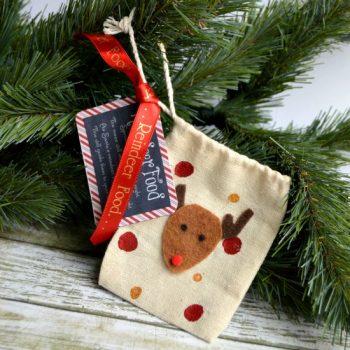 Reindeer Food Ornament