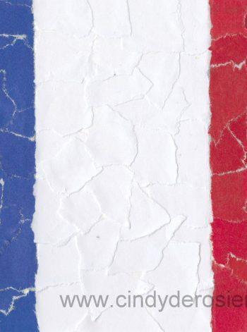 French Flag Mosaic
