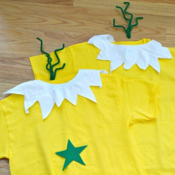 Easy Dr. Seuss Sneetches Costume