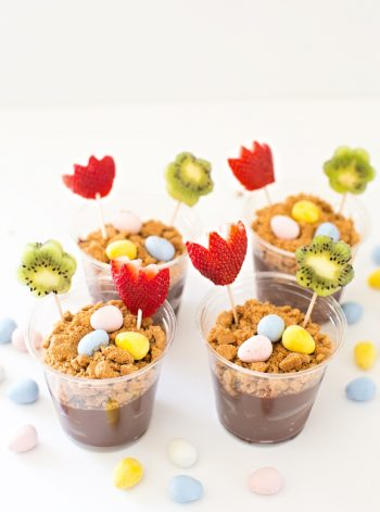 Spring Fruit Flower Treat