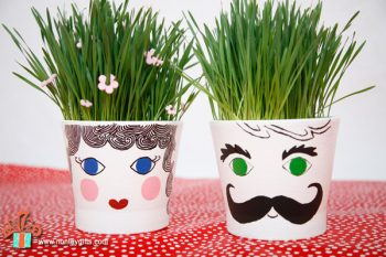 Learn how to make grass head pots - a fun an educational spring craft for kids