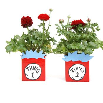 Thing 1 and Thing 2 Recycled Planters