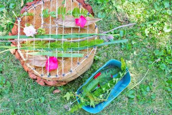 Turn a tree stump into a loom that is woven outdoors with natural materials.
