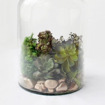 Faux Moss and Succulent Terrarium