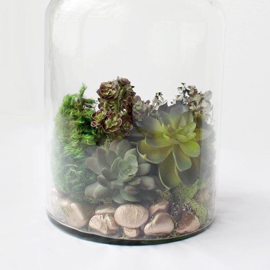 Faux Moss And Succulent Terrarium Fun Family Crafts