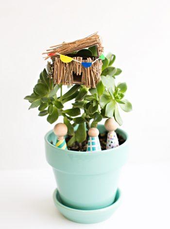 Succulent Plant Mini Tree House