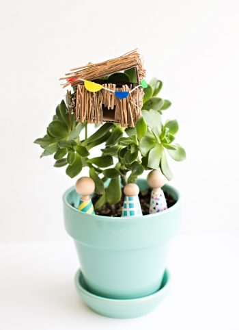 Succulent Plant Mini Tree House