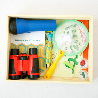 DIY nature explorer kit for kids. This kit is targeted towards the study of bugs but it can be easily made for butterflies, birds or plants. Use it for nature walks or to study bugs in your own backyard.