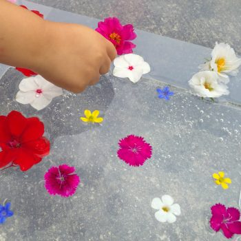 Floating Flower Sensory Bin