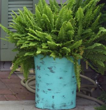 DIY Large Planters
