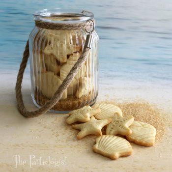 Sea Shell Cookies in a Jar