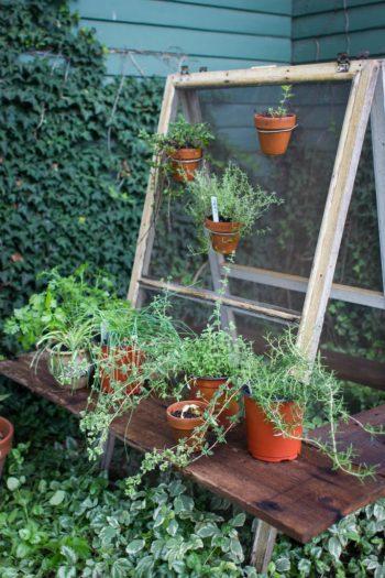 herb_garden
