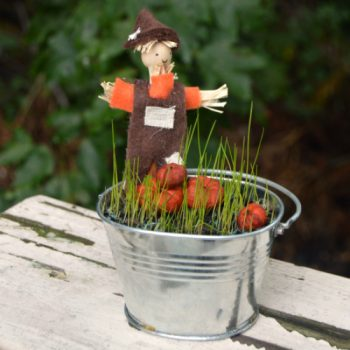 This fall-inspired mini pumpkin patch is perfect to do with the kids!