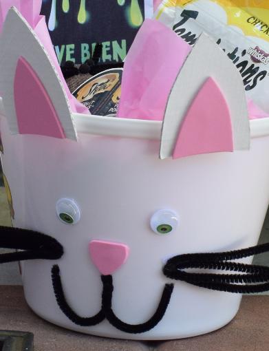 Cat BOO Kit