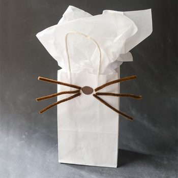 Dan and Phil inspired whiskers gift bag.