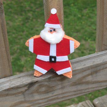 Starfish Santa