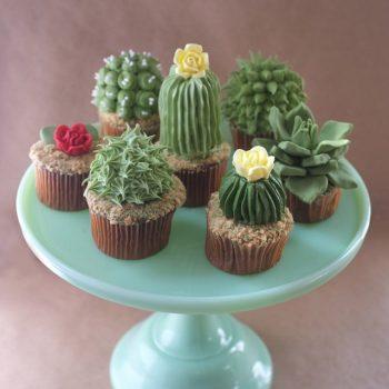 Houseplant Cupcakes