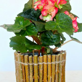 Twig Flower Pot