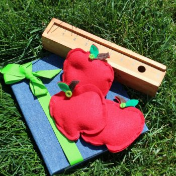 Mini Apple Beanbags