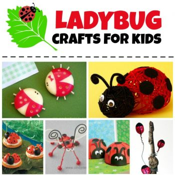 Ladybug Crafts and Recipes for Kids