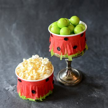 Watermelon Fringe Snack Cup