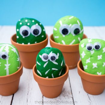 Cactus Pet Rocks