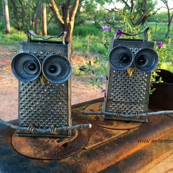 Kitchen Grater Owl