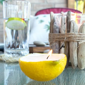 Lemon Live Votive Candles