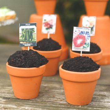 Easy Spring Garden Cupcake Toppers