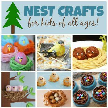 Bird Nest Crafts for Kids
