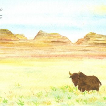 Buffalo in the Badlands Painting