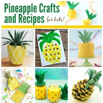Pineapple Crafts and Recipes