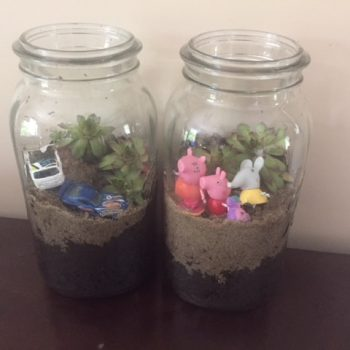terrarium with toys