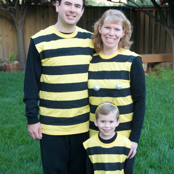 Homemade Family Bumble Bee Costumes
